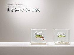 三澤遙(Haruka Misawa)──Waterscape 水中風景,2016/2/20 原汁原味(再加上新作),展出於LinkLion雄獅星空。